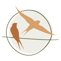 The Birding Co-op Icon
